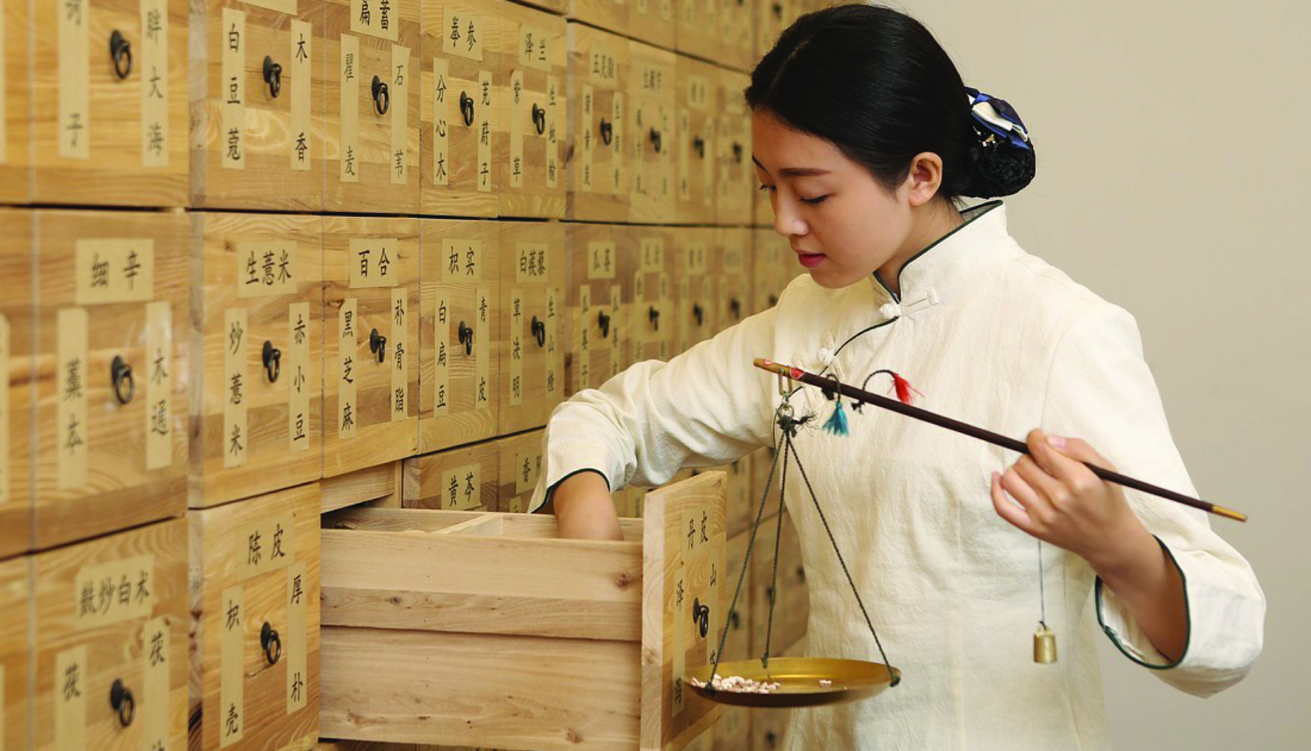 Diploma in Traditional Chinese Medicine